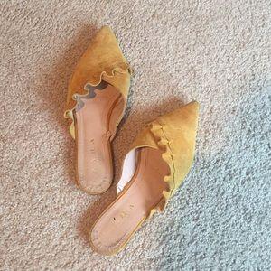 Zara 6.5 yellow suede ruffle pointed toe flats